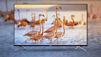 [REVIEW] 5 tivi Vsmart đáng mua bán chạy nhất 2021